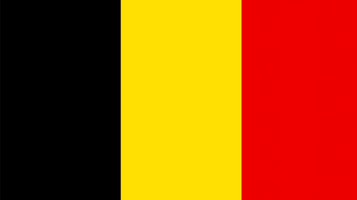angajare sofer de tir belgia