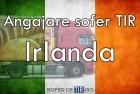 Angajare sofer de TIR in Irlanda